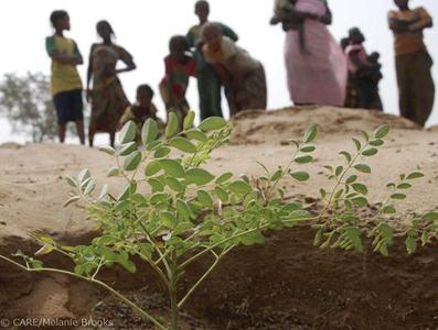 Care sahel spenden afrika