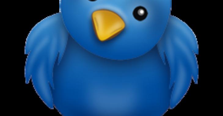 Fill 730x380 original twitter03