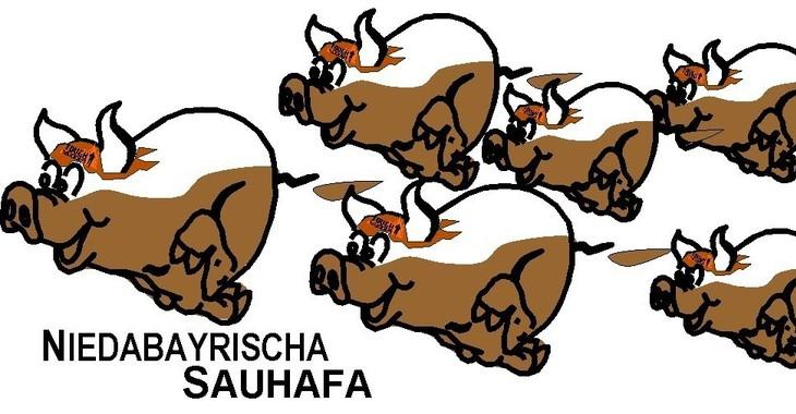 Fill 730x380 sauhafa logo