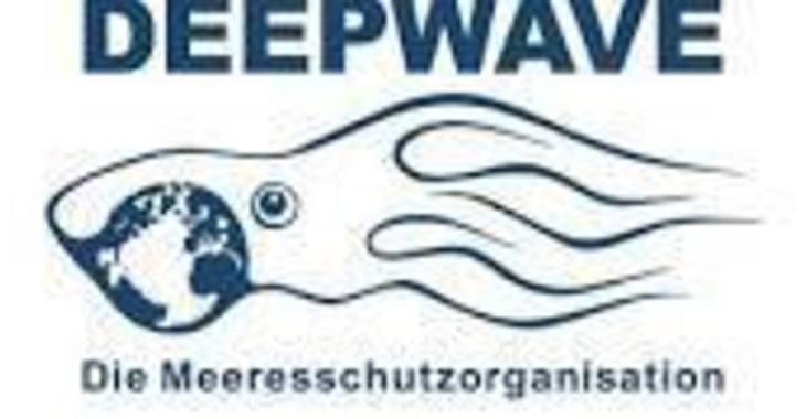 Fill 730x380 bp1488891223 deepwave logo