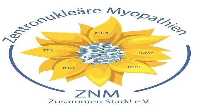 Fill 730x380 bp1487139237 l logo znm1 01test2960500