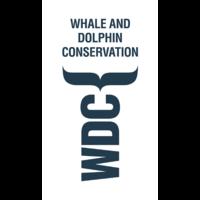 Fill 200x200 original wdc logo v d rgb klein
