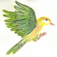 Fill 200x200 original vogel 9nach rechts farbig