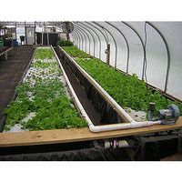 Fill 200x200 original aquaponic greens