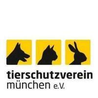Fill 200x200 bp1535022380 tsv logo facebook