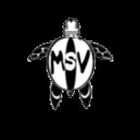 Fill 200x200 profile thumb msv logo1200
