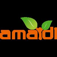 Fill 200x200 bp1486208639 logo amaidi ohne hintergrund 984x380px png
