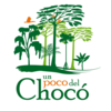 Un poco del Chocó