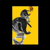 Fill 200x200 profile thumb logo sdf