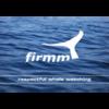 Stiftung firmm