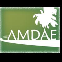 Fill 200x200 logo amdae 01