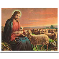 Fill 200x200 jesus mit schaf