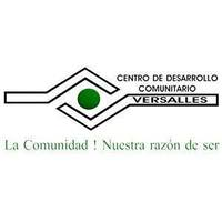 Fill 200x200 cdcv logo