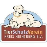 Fill 200x200 logo tierheimhsklein