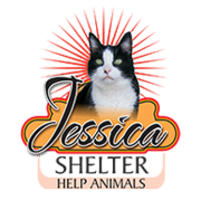 Fill 200x200 cat shelter jessica