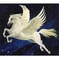 Fill 200x200 bp1481025761 pferd mit fl gel