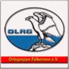 DLRG OG Falkensee e.V.