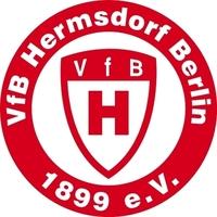 Fill 200x200 425px vfb hermsdorf rund