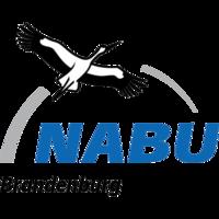 Fill 200x200 bp1474457685 nabu brb logo transparent
