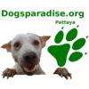 Dogsparadise Pattaya
