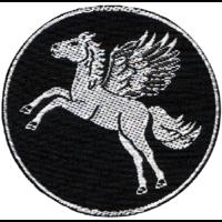 Fill 200x200 pegasus logo