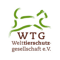 Fill 200x200 bp1489667260 wtg logo international rgb