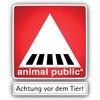 animal public e.V.