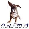 Anima Hilfe für Tiere e. V.