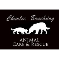Fill 200x200 charlie beachdog animal care small
