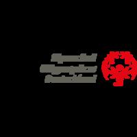Fill 200x200 sode logo 3z 4c