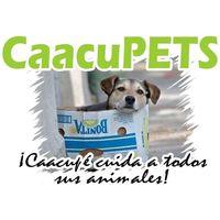 Fill 200x200 caacupets logo