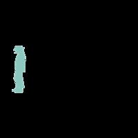 Fill 200x200 bp1533130815 udolindenbergstiftung schwarzmint rgb 01