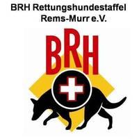 Fill 200x200 brh logo