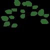 Schutzwaldverein e.V.