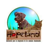 Fill 200x200 hopeland con letras