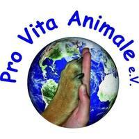 Fill 200x200 1467198519 logo pva