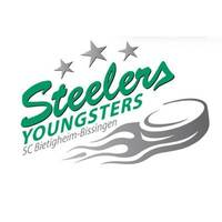 Fill 200x200 1468174309 141012 steelers youngsters