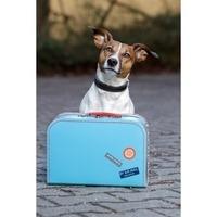 Fill 200x200 1468322105 hund koffer