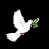 Fill 200x200 bp1471140647 amani logo
