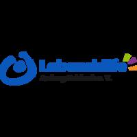Fill 200x200 bp1471506455 logo lebenshilfe 01 freigestellt