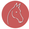 Hilfe für alte Pferde