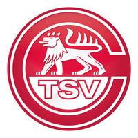Fill 200x200 bp1479312893 logo relaunch tsv calw 3d positiv weiss
