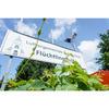 Flüchtlinghilfe der Luthergemeinde Bahrenfeld