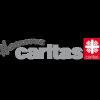 Fill 200x200 bp1481531419 caritas hannover logo grosse aufloesung transparent