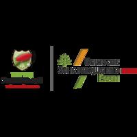 Fill 200x200 bp1482314905 dsj ttv logo