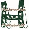Trachtenverein d'Wageggler Börwang-Haldenwang