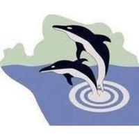 Fill 200x200 bp1493384618 logo delphin netzwerk