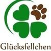"""Tierschutzverein """"Glücksfellchen Tierhilfe e.V."""""""