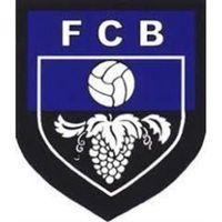 Fill 200x200 bp1507721922 logo fcb