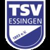 TSV Essingen Abteilung Fußball